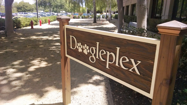 Google's DooglePlex