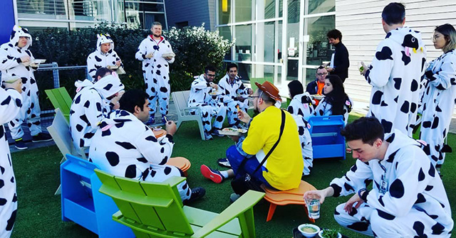 Googlers Dress Up As Cows
