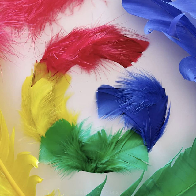 Google Feather G Logo