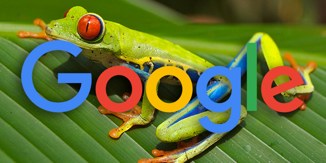 Google Frog