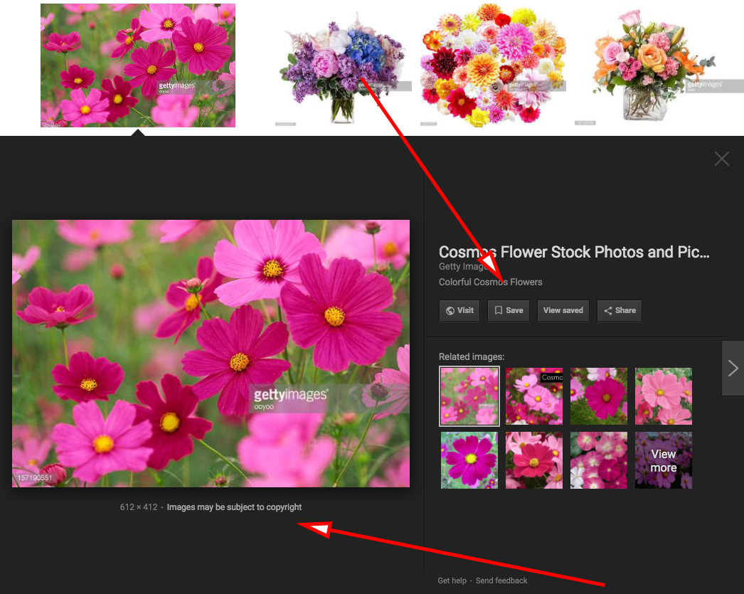Google removes 'view image' button from searches