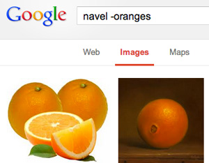 Google Image Exclusions