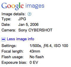 Google Image Data