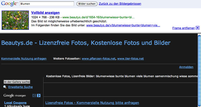 Google Image Result Test in Germany