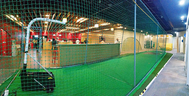Google Bangalore Has An Indoor Cricket Field