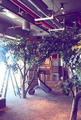Google Indoor Farm