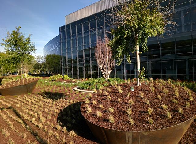 GooglePlex Landscaping