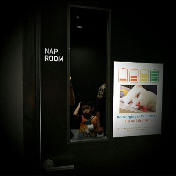 Google Nap Rooms