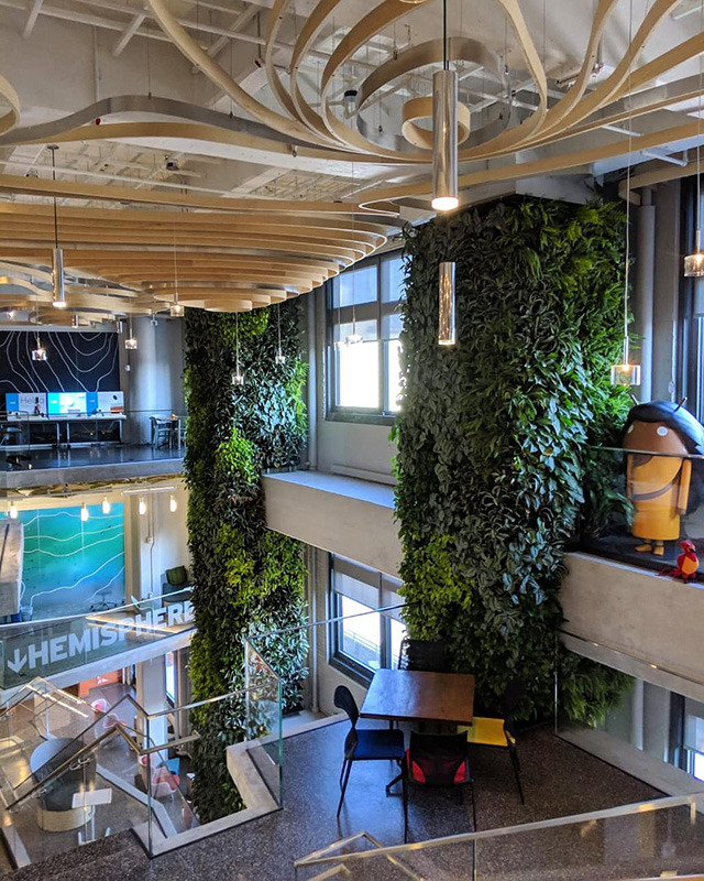 Interior Photo Of Google NYC Office