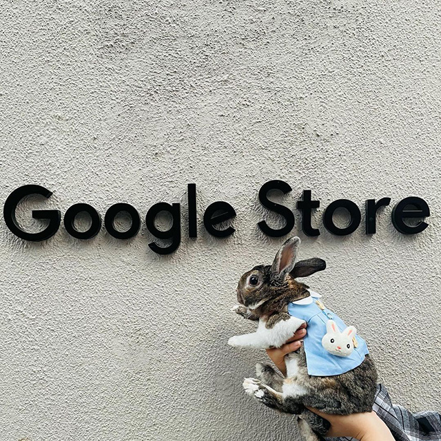 Google NYC Physical Store Sign with Bunny