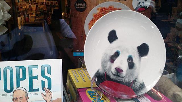 A Panda Plate