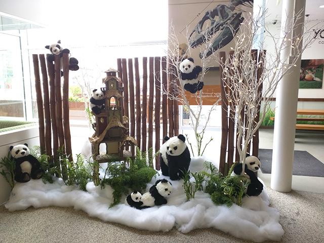 Google Panda Nativity Scene In Lobby