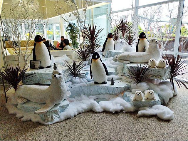 Google Office Penguin Winter Display
