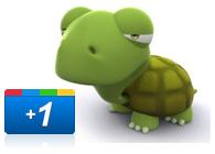 Google Plus Slow