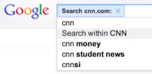 Google Search Within