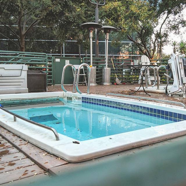 Google Swimming Machine Pool