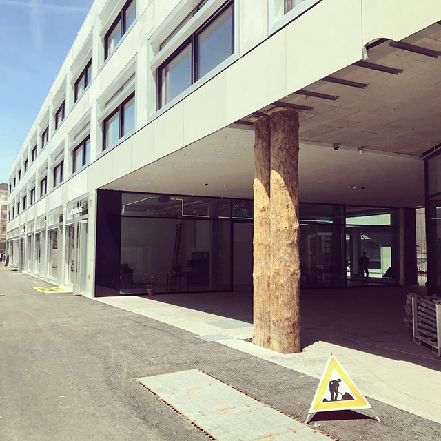 Google Zurich Office Held Up By Two Trees