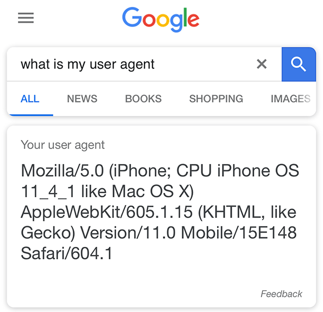 Google Answer For What Is My User Agent