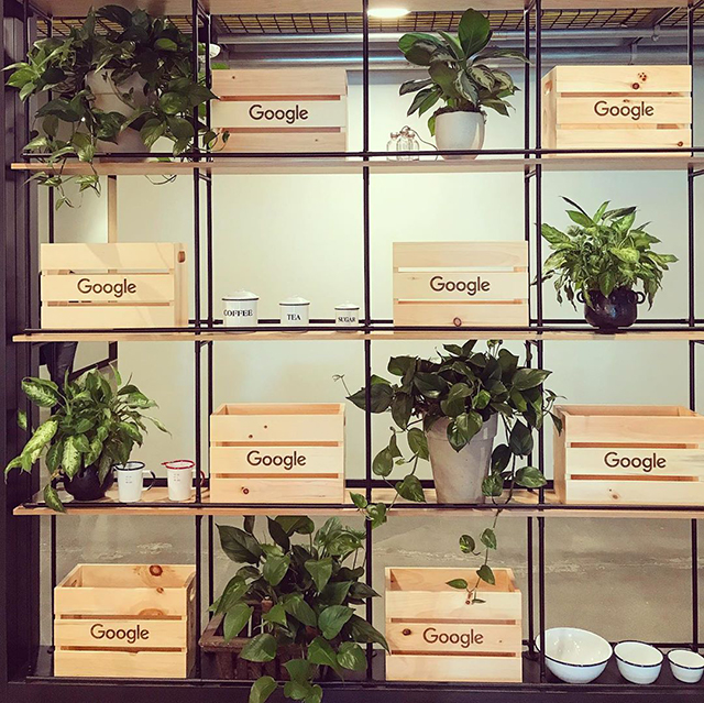 Google Wooden Crates