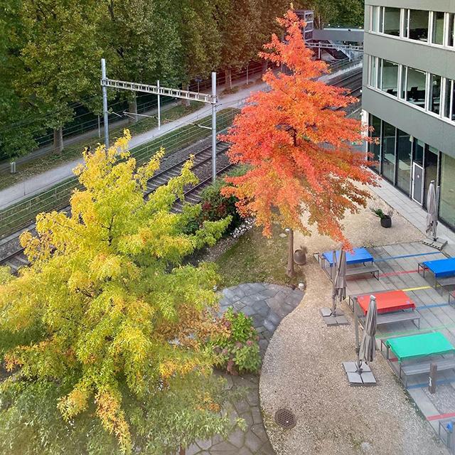 Google Zurich Picnic Table Area