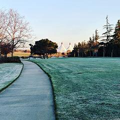 GooglePlex Lawn Has Frost