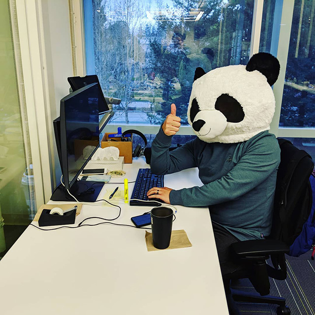 Googler Wearing Panda Head At Desk