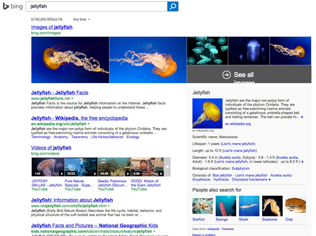 Google Indexing Bing's Jellyfish