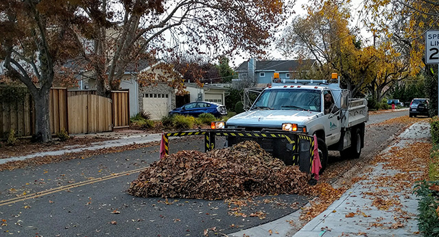 Mountain View Has Leaf Plows Not Snow Plows