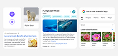 Google New Mobile Search Design Side By Side Comparison
