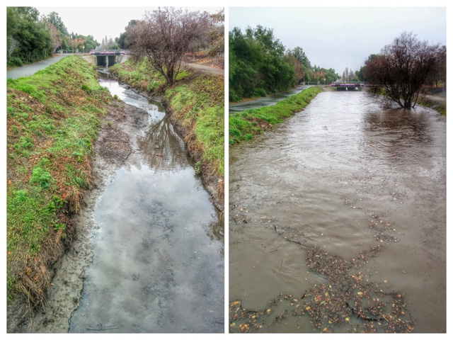 Permanente creek before and after