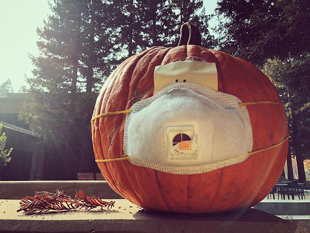 Face Mask On Pumpkin At Google Office
