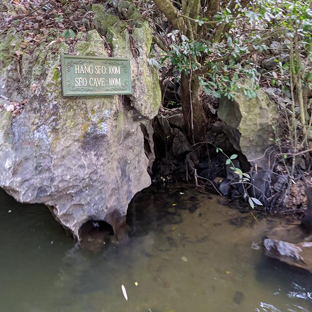 SEO Cave