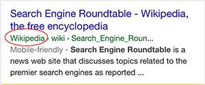 Google Site Name Markup