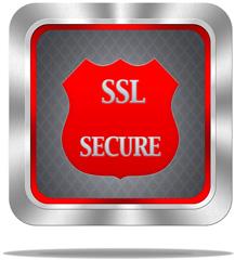 SSL Frame