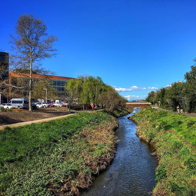 Stevens Creek By Google