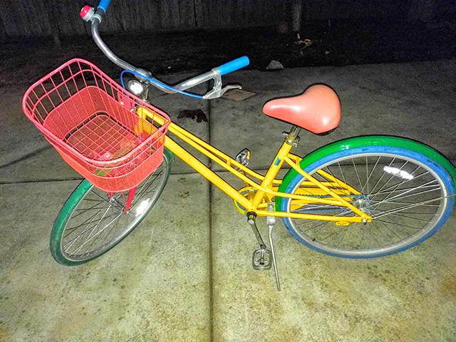 A Stolen Google Bike