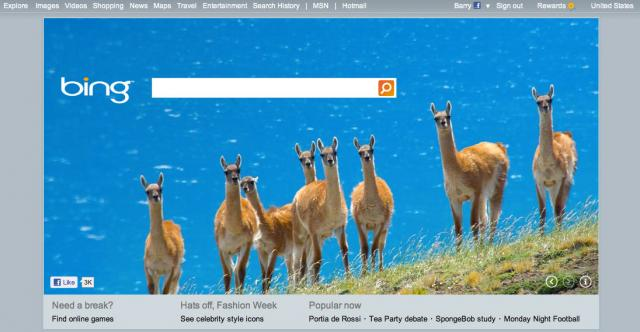 Bing Home Page Design