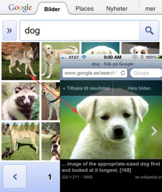 Google Image Mobile Bug