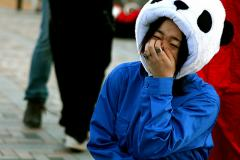 Google Panda Laughing