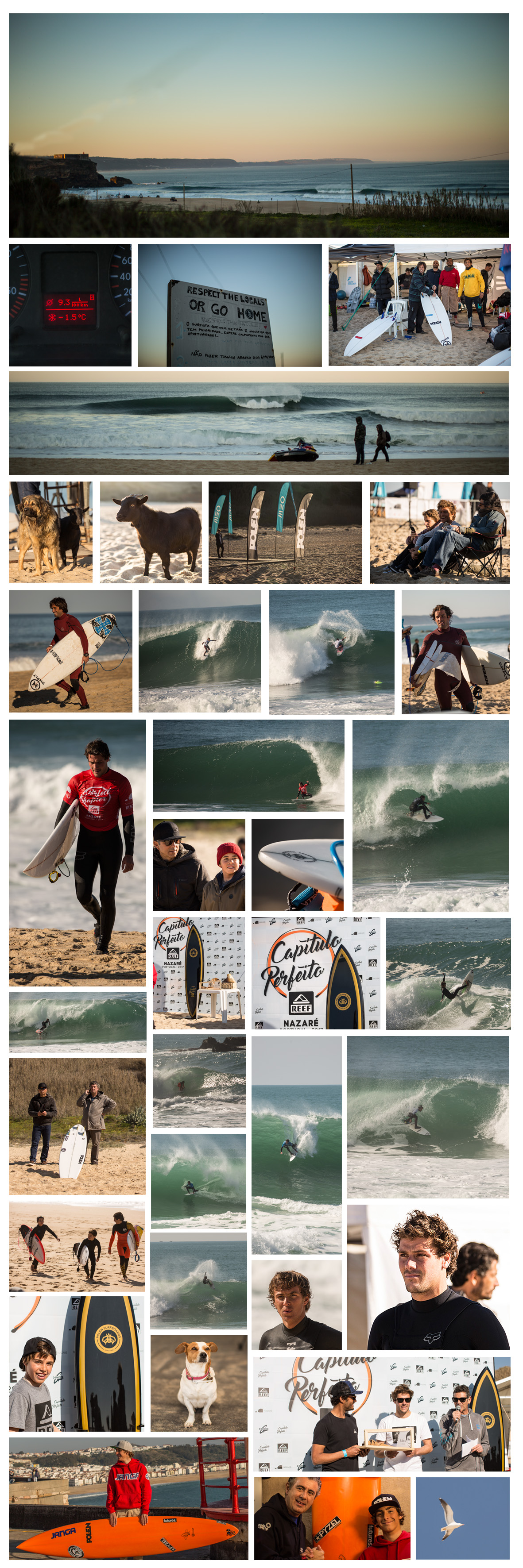 POLEN SURFBOARDS @ CAPÍTULO PERFEITO