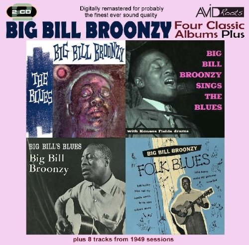 Big Bill Broonzy Baby, I Done Got Wise cover art