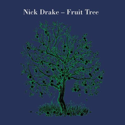 Nick Drake Black Eyed Dog cover art
