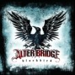 Alter Bridge: White Knuckles
