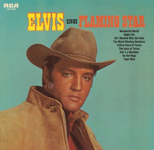 Elvis Presley Flaming Star cover art
