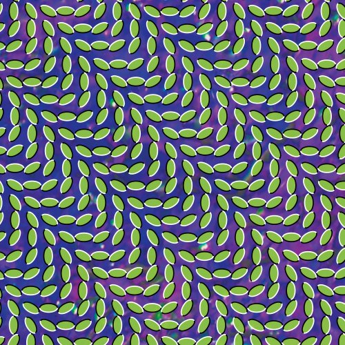 Animal Collective My Girls cover art