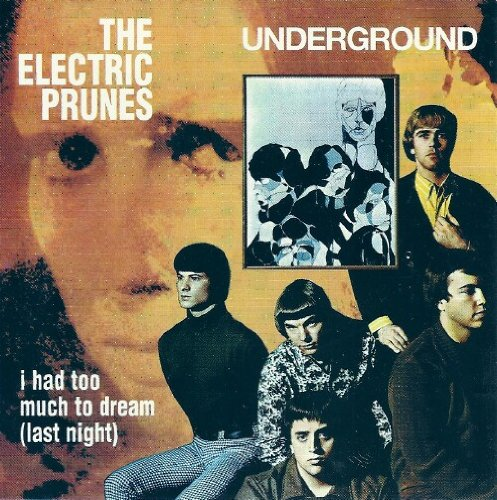 The Electric Prunes I Had Too Much To Dream (Last Night) cover art