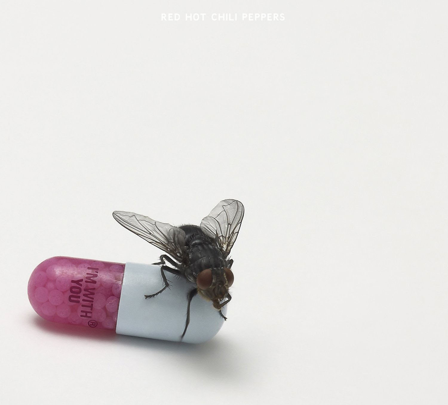 Red Hot Chili Peppers Monarchy Of Roses cover art