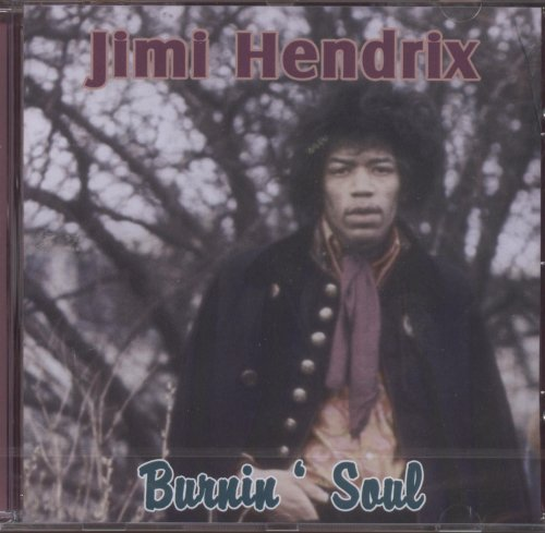 Jimi Hendrix Long Hot Summer Night cover art