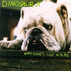 Dinosaur Jr. Not You Again cover art