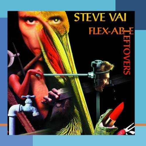 Steve Vai Little Pieces Of Seaweed cover art
